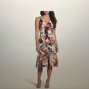 The Stolen Pansy Dress (Cooper Street)